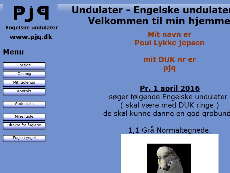 Undulater - Engelske undulater by pjq